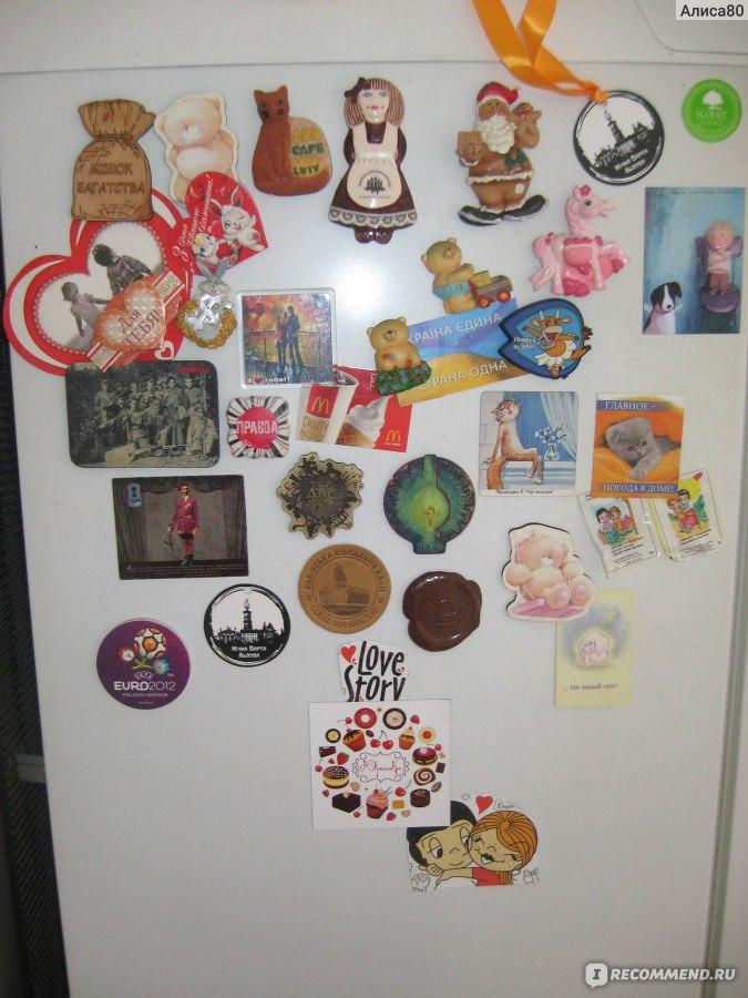 Магнит на холодильник член