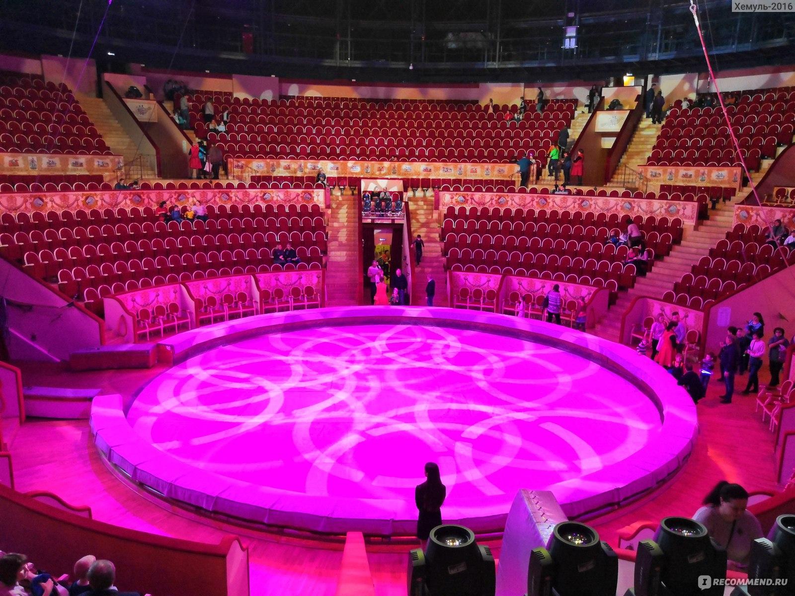 результате фото нового зала цирка на фонтанке сборе