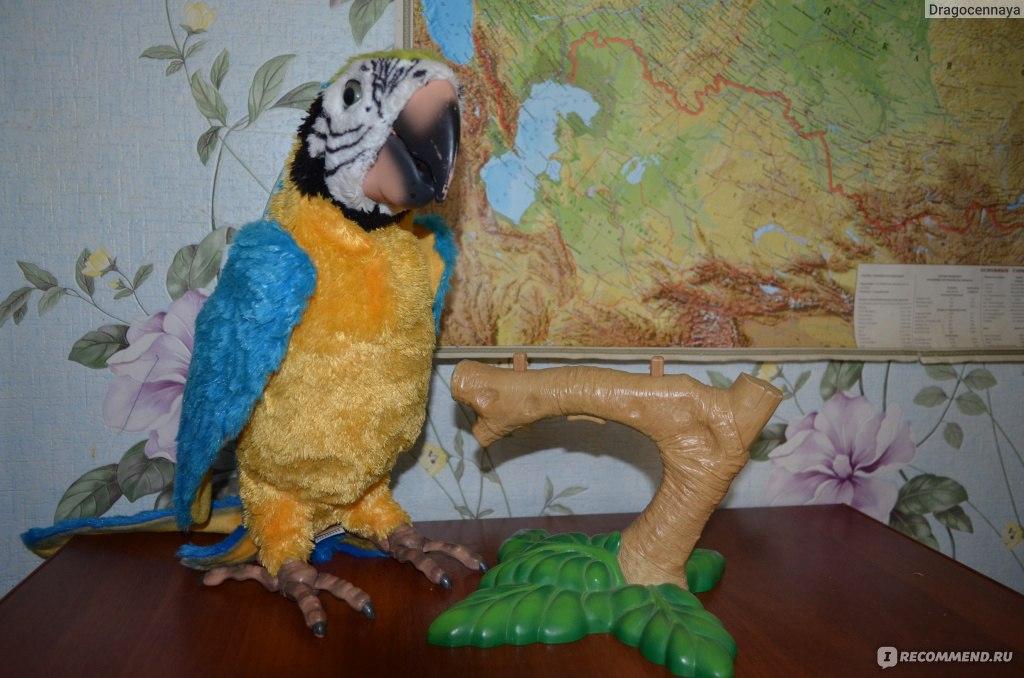 Инструкция интерактивного попугая