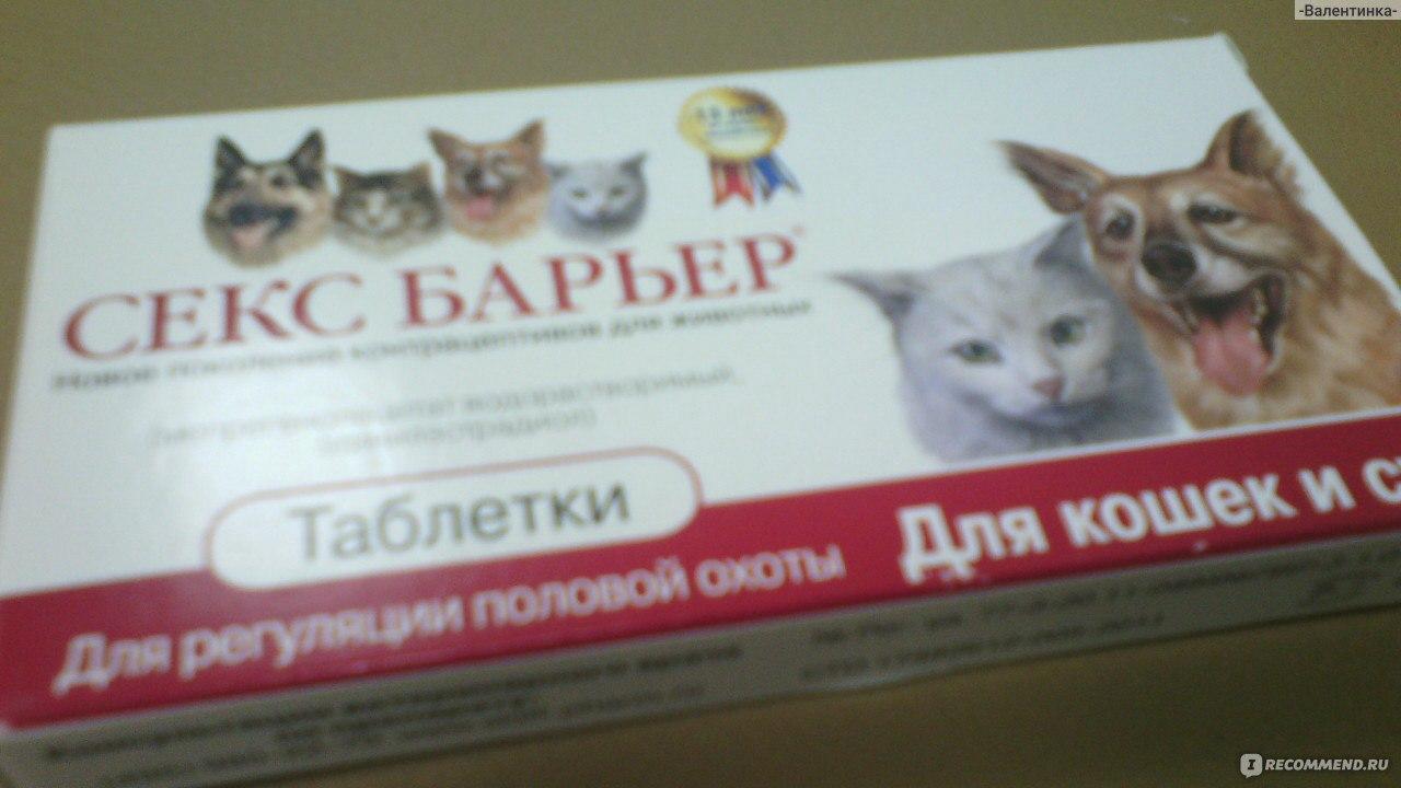 Сколько Можно Давать Кошке Таблеток Секс Баръер