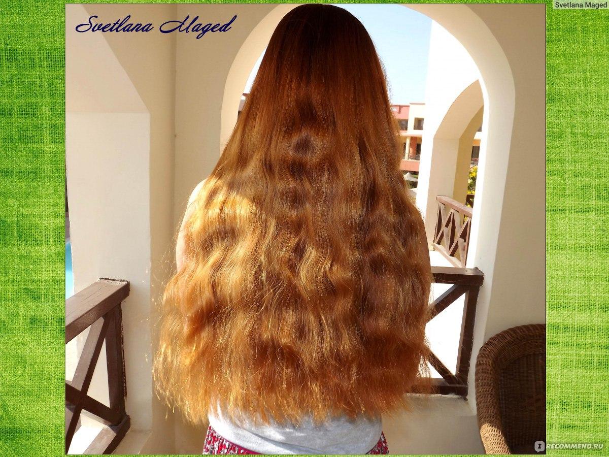 Ополаскивание волос крапивой отзывы с фото