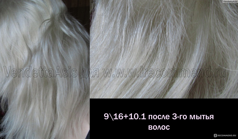Эстель 9.0 фото на волосах