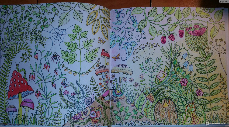 Раскраска зачарованный лес и таинственный сад