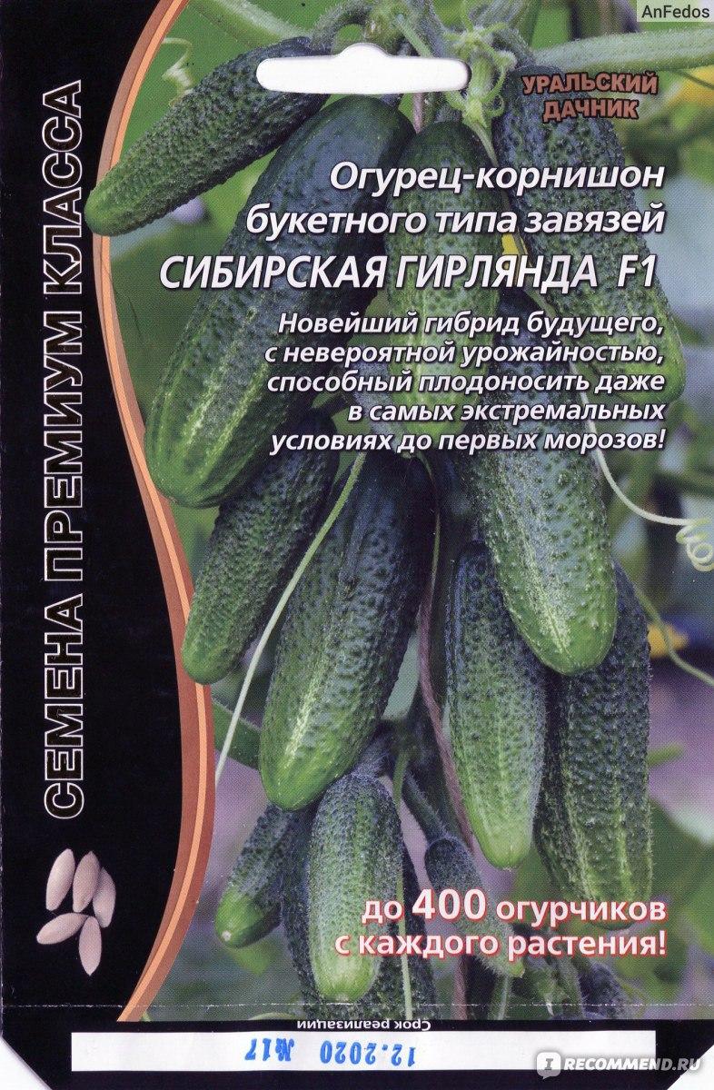 "Семена огурец ""сибирская гирлянда f1"" букетного типа завязей."
