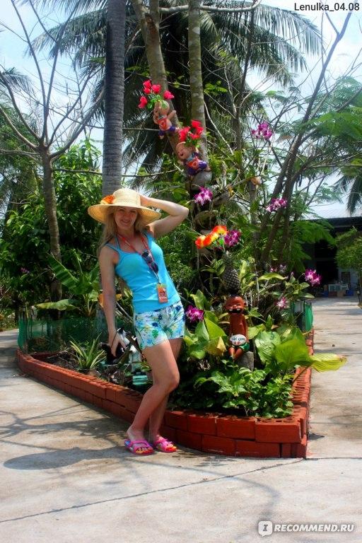 Экскурсия фруктовый сад паттайя