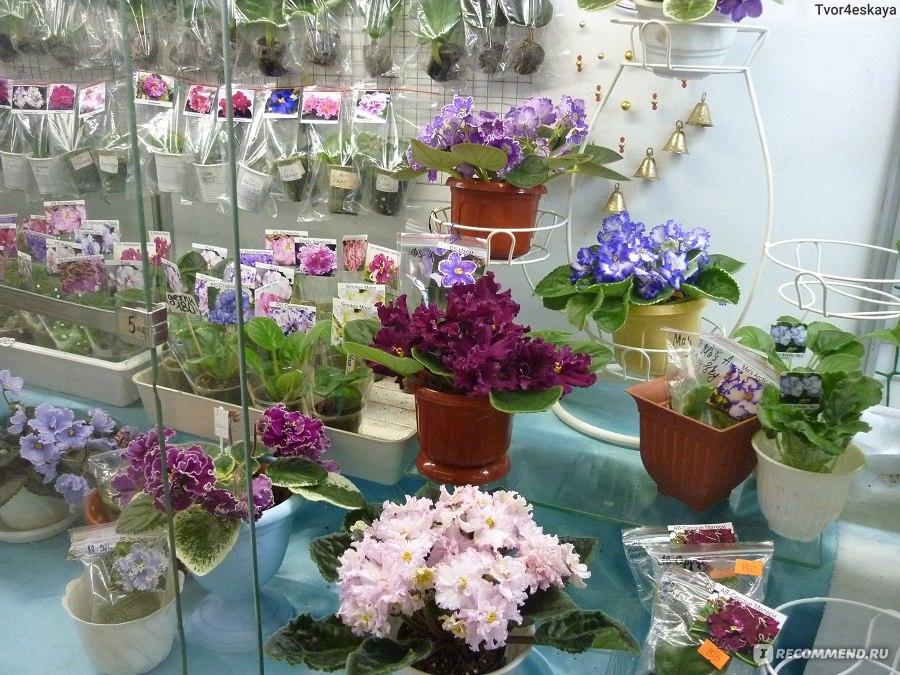 Магазин цветов на ввц, цветы заказ коллекции