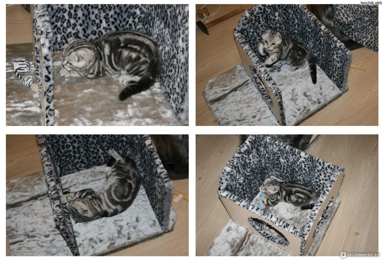 Домик для кошек фото своими руками инструкция