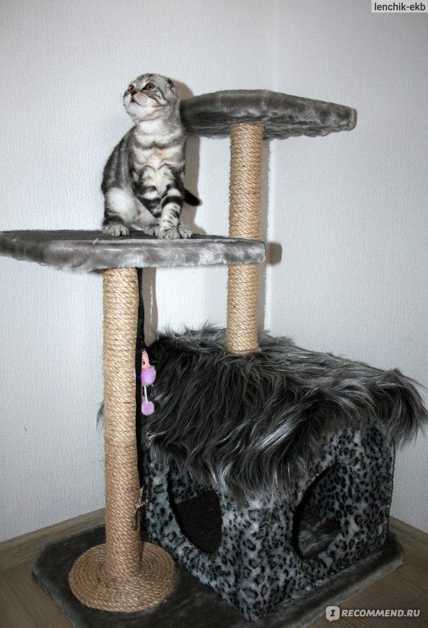 Как сделать когтеточку дом для кошки своими руками