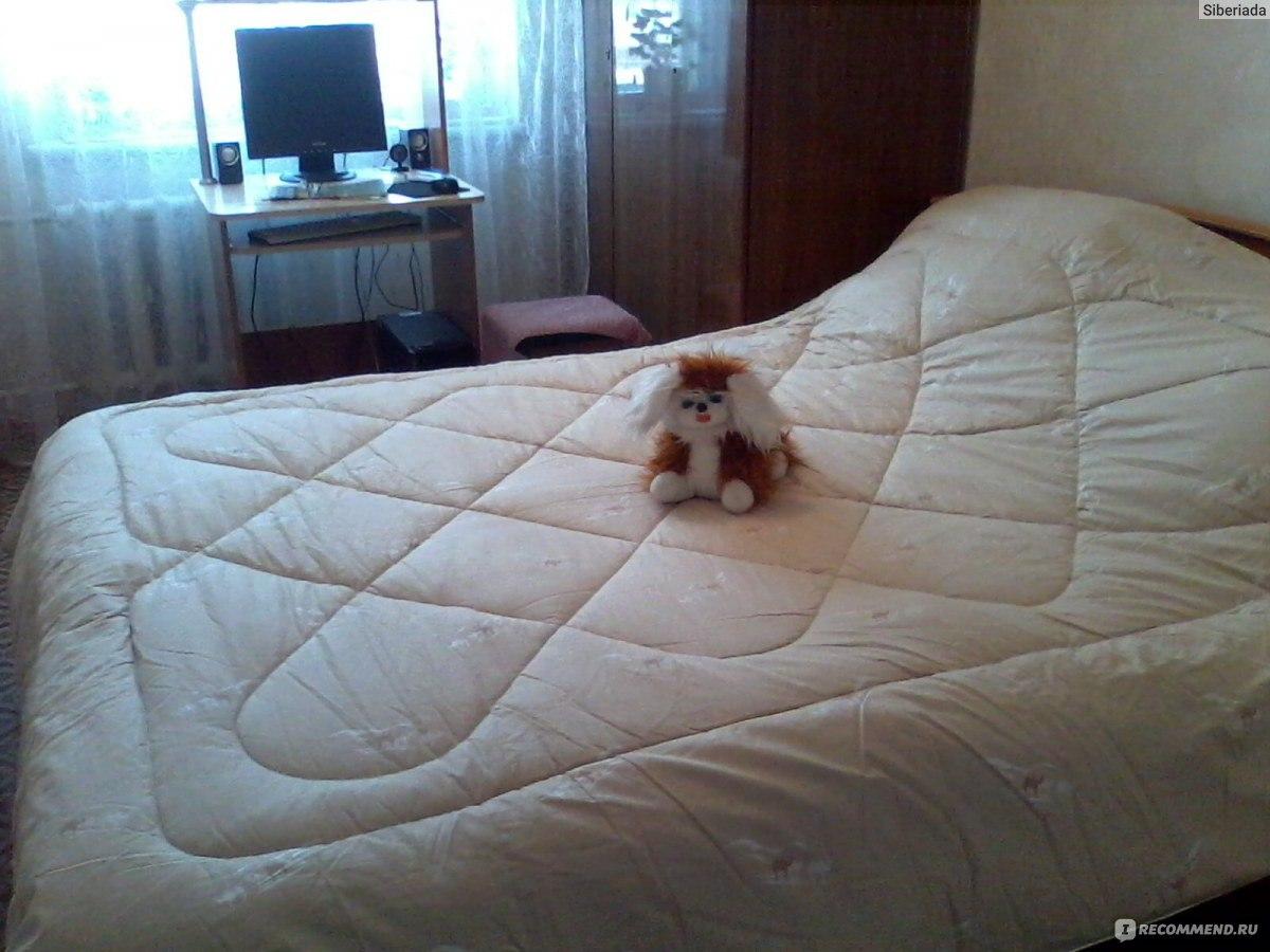 4d8070edf8c1 Одеяло из верблюжьей шерсти ООО