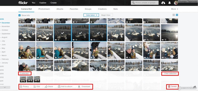 лучшие фотохостинги для загрузки фото русском