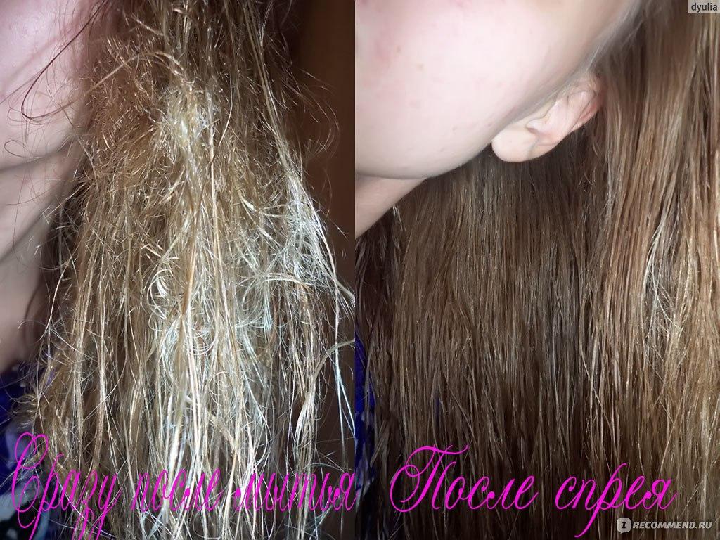 Сожгла волосы как восстановить в домашних условиях 967