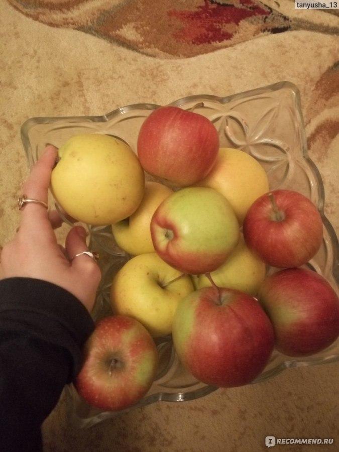 Диета яблочная отзывы