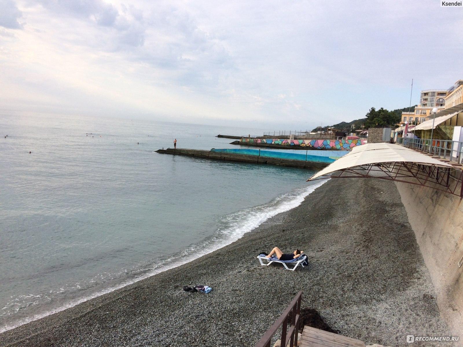 Лазаревское пляж дельфин фото
