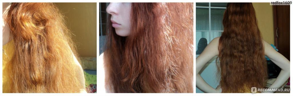 Сожгла волосы как восстановить в домашних условиях 190