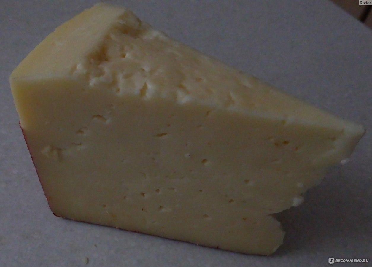 Как сделать сыр из козьёго молока 219