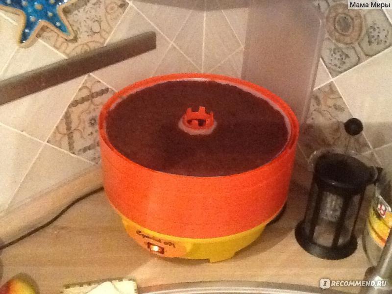 Электросушилка для фруктов своими руками фото 443