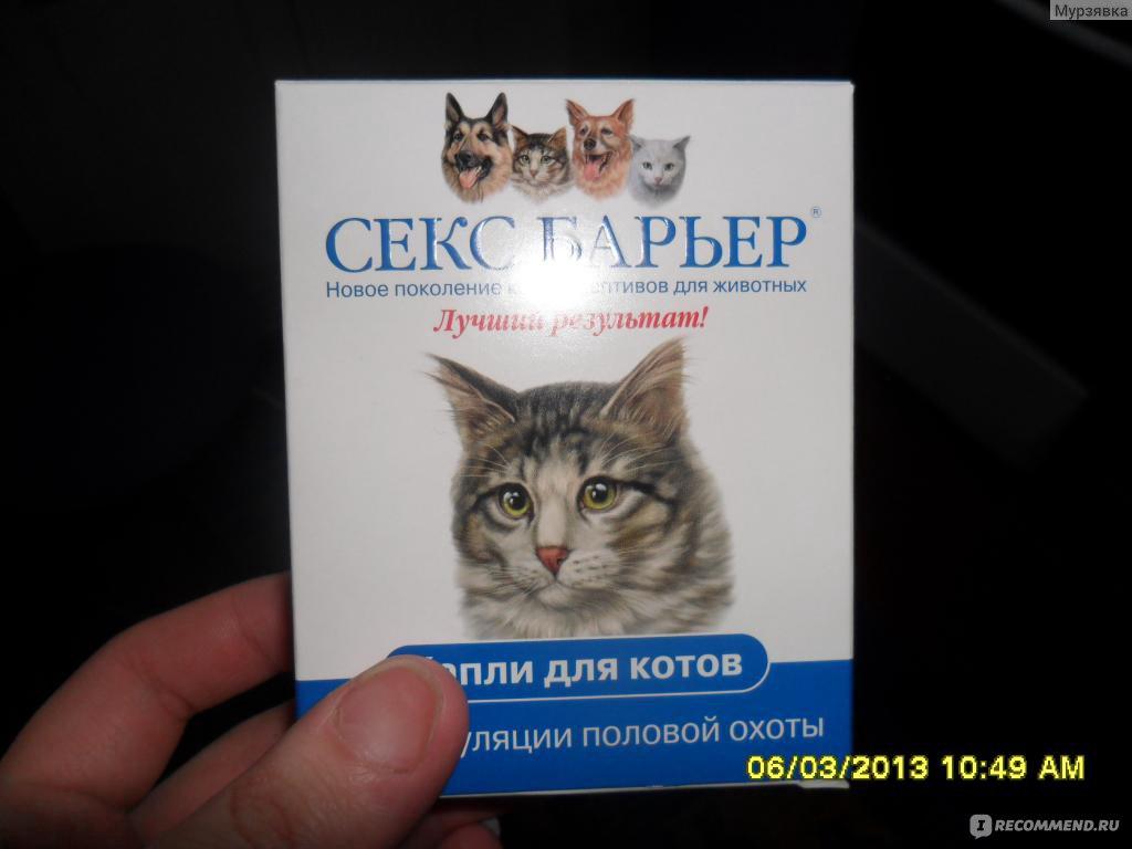 этой статье почему стерилизованная кошка орет виду материала, которого