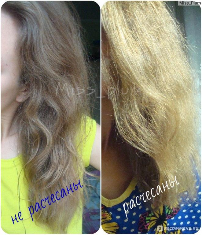 Частичное выпадение волос у котов
