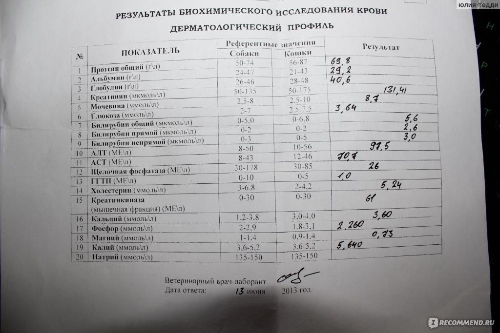 Биохимия сроки крови анализ на беременности вены крови неделе из 16 анализ