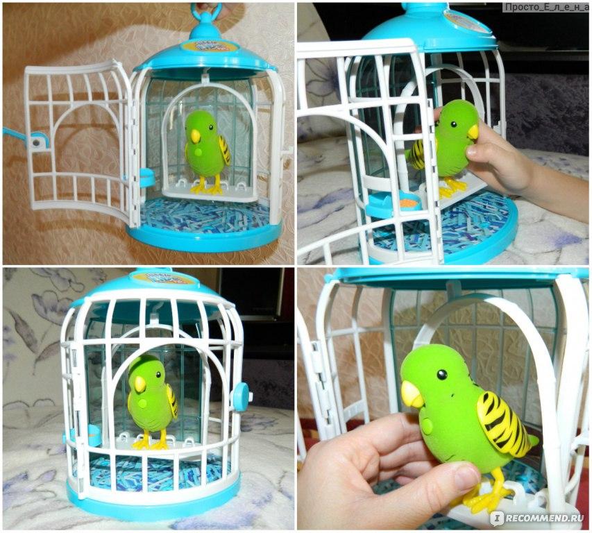 Как сделать клетку для игрушечной птички
