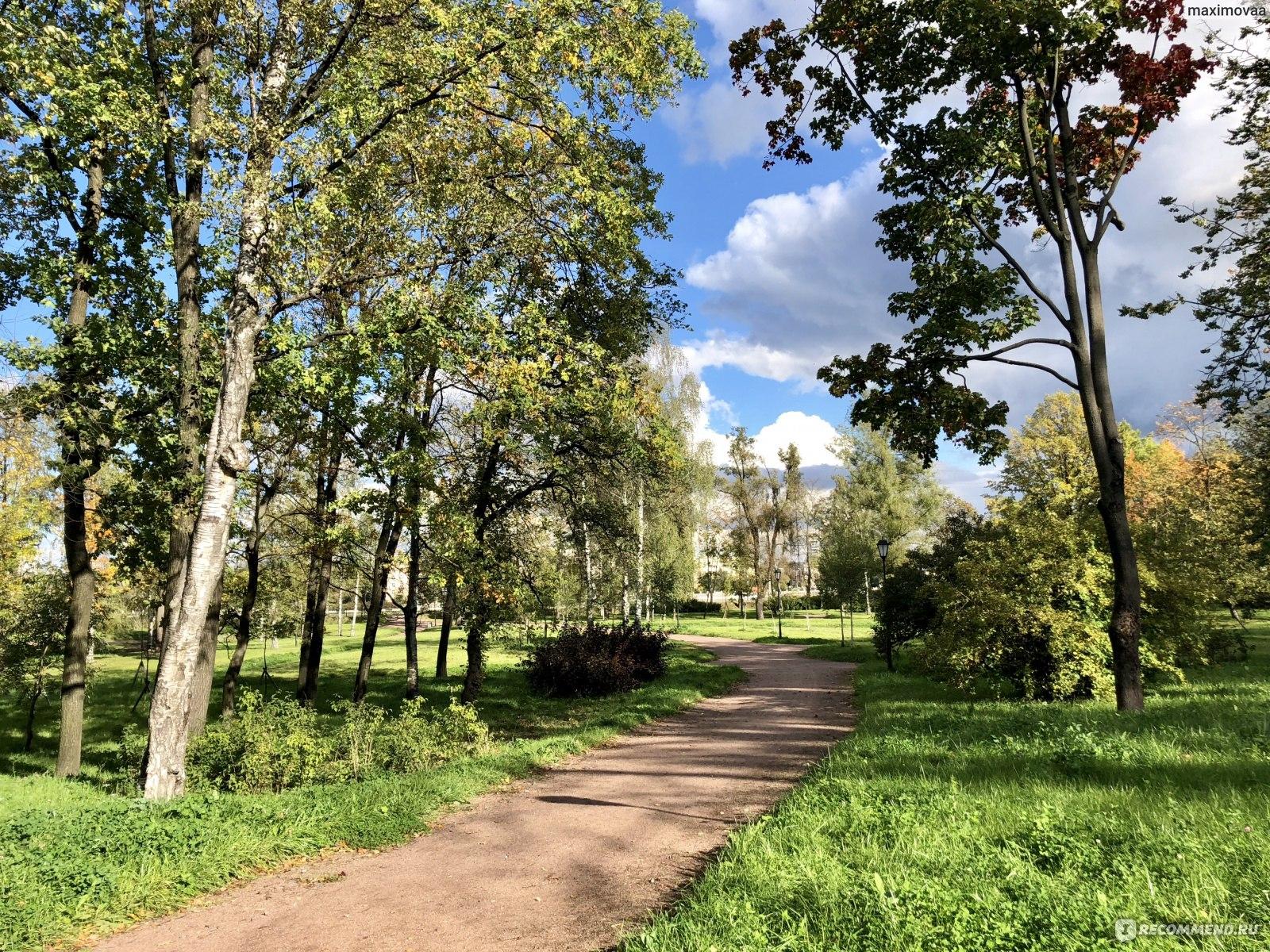 оливер предлагает брестский парк невский фото чем можно