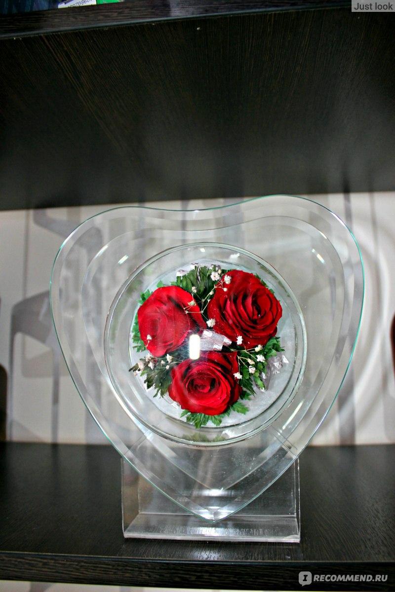 Цветы в вакууме живые или нет