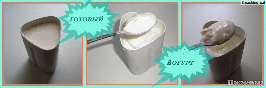 Как сделать йогурт на бифидумбактерине