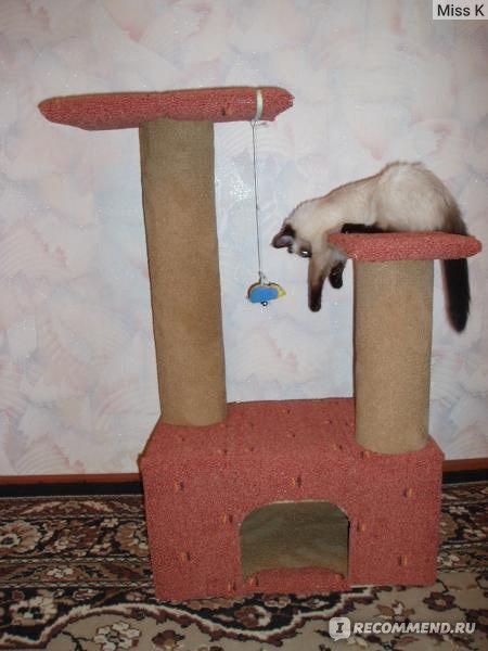 Своими руками домик для котенка с инструкцией
