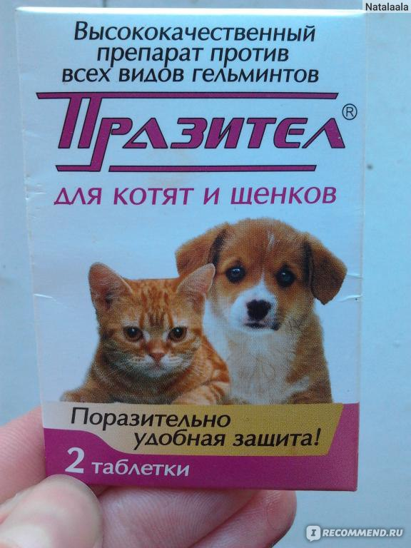 препарат от всех видов паразитов у человека