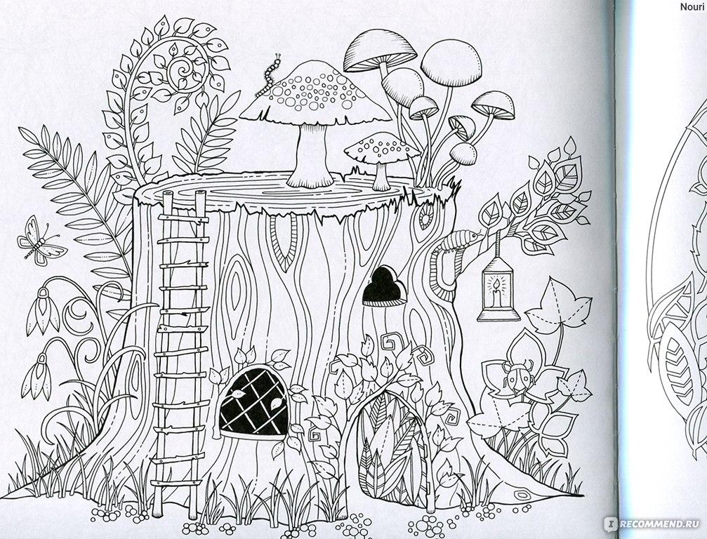 Раскраски заколдованный лес скачать