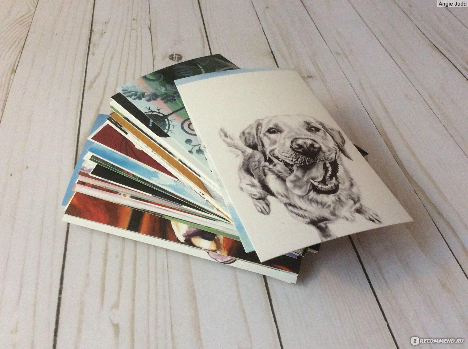 бизнес открытки для посткроссинга набор них объездил