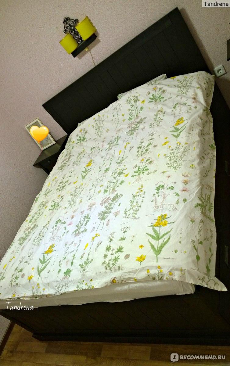 Где купить кровать аскона с матрасом