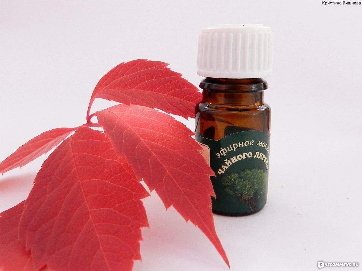 Чайное дерево эфирное масло для беременных 1150