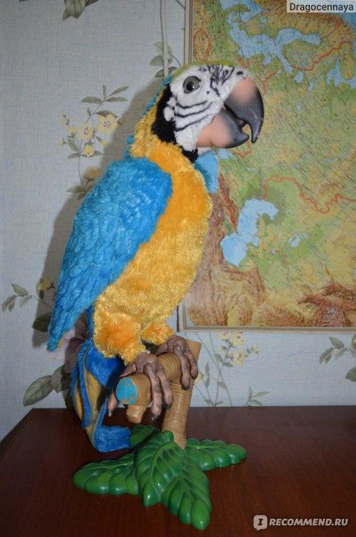 Инструкция интерактивный попугай умный кеша