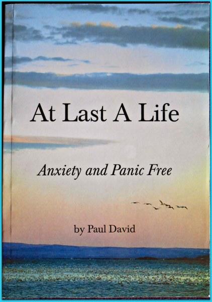 Пол дэвид возвращение к жизни книга скачать.