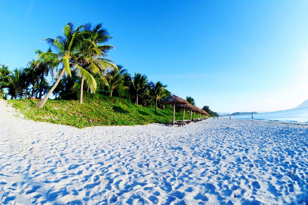 сорта фото пляжа доклет страна фильма алиса