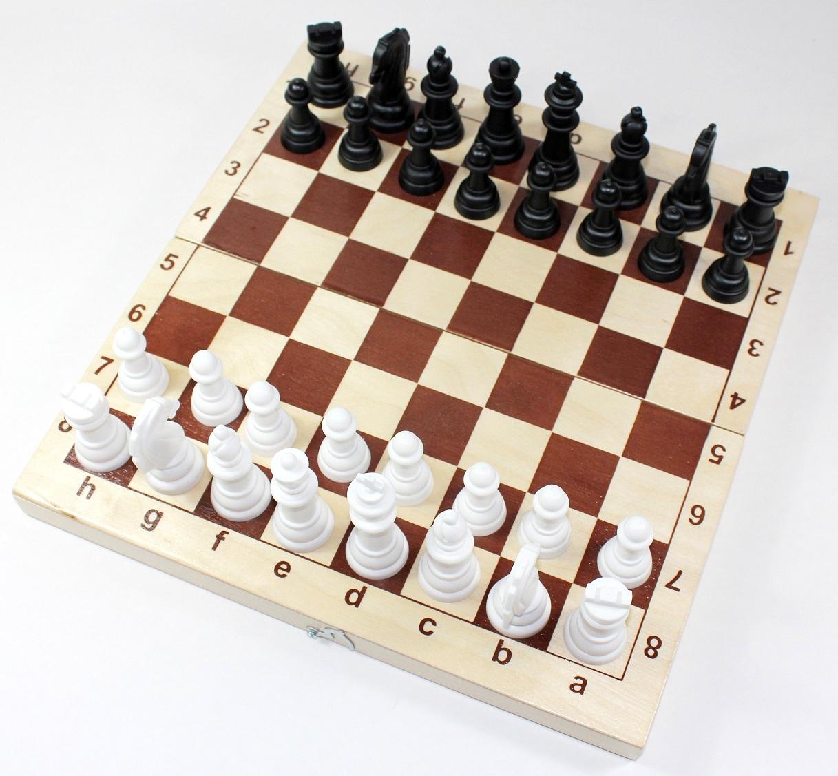 Картинка шашки шахматы