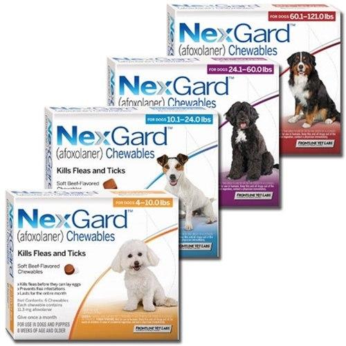 Dog Heartworm Tablets Uk