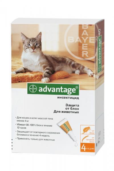 Адвантикс инструкция по применению для кошек