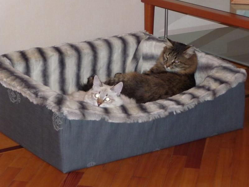 Лежанки для кошек фото своими руками