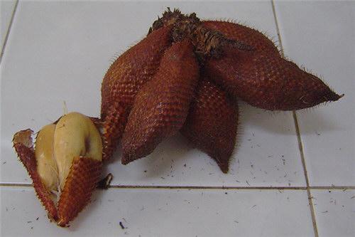 фото змеиный фрукт