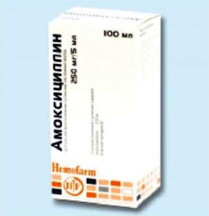 амоксициллин инструкция по применению у беременных