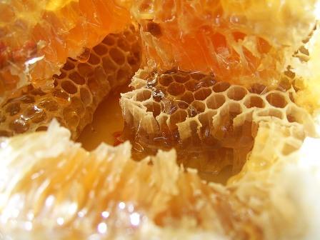 как выглядит пчелиный воск